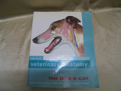 Color Atlas of Veterinary Anatomy